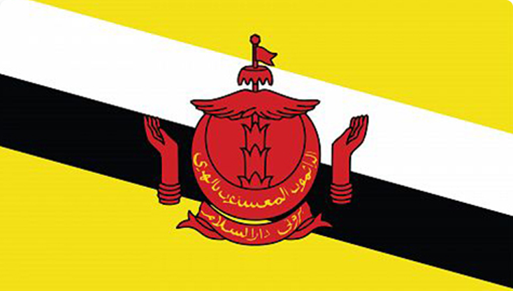 oversea-flag-brunei